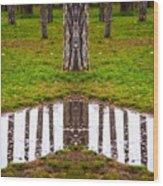 bois de Boulogne, Paris Wood Print