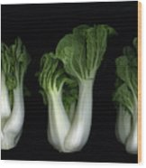 Bok Choy Wood Print by Christian Slanec
