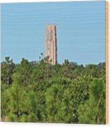 Bok Tower In December Wood Print
