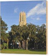 Bok Tower Sanctuary Wood Print