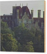 Boldt Castle 22 Wood Print