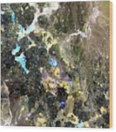 Bolivian Andes From Space Wood Print