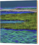 Bolsa Chica Wetlands I Abstract 1 Wood Print