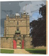 Bolsover Castle Wood Print