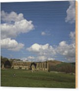 Bolton Abbey Wharfedale Near Skipton North Yorkshire England Wood Print