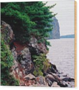 Bon Echo Shoreline Wc 2  Wood Print