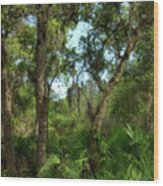 Bon Secour Trail Wood Print
