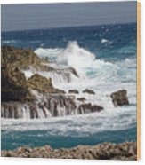Bonaire North Shore 1 Wood Print