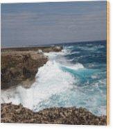 Bonaire North Shore 2 Wood Print