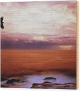 Bondi Beach Wood Print