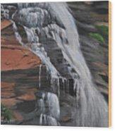 Bone Creek Falls Wood Print