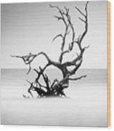 Boneyard Beach X Wood Print