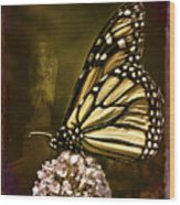 Boneyard Butterfly Wood Print