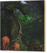 Bongos In Our Dreams-whwf Wood Print