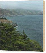 Bonita Cove Wood Print
