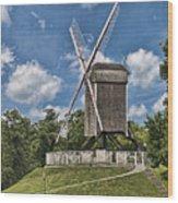 Bonne Chiere Windmill Wood Print
