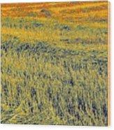 Bonneuil Harvest Wood Print