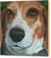 Bonnie - Beagle Painting Wood Print