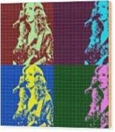 Bonnie Raitt Pop Art Poster Wood Print
