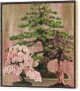 Bonsai Garden Wood Print