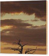 Bonsai Tree Wood Print