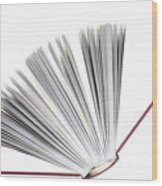 Book Wood Print by Frank Tschakert