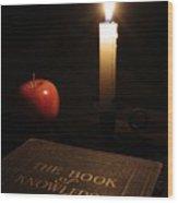 Book Of Knowledge  Wood Print