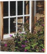Books In The Window Wood Print