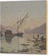 Bord Du Lac A Rivaz Wood Print