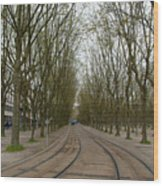 Bordeaux Tram Wood Print