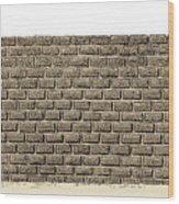 Border Wall Wood Print