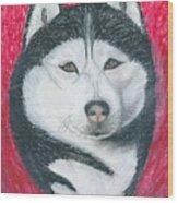Boris The Siberian Husky Wood Print