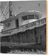 Born Free Wood Print