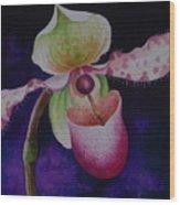 Borneo Orchid P Chiquita Wood Print