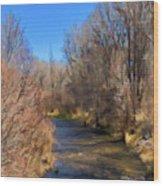 Bosque De Rio De Taos Wood Print