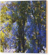 Bosque Glow And Chantilly Snow Wood Print