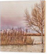 Bosque Winter II Wood Print