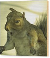 Bossy Squirrel Wood Print