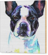 Boston Bulldog Portrait Wood Print