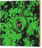 Boston Celtics 1b Wood Print