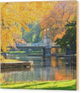 Fall Season At Boston Common Wood Print