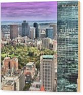 Boston From Above Wood Print