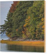 Boston In The Fall Wood Print