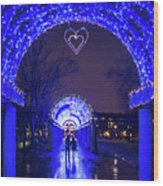 Boston Ma Christopher Columbus Park Trellis Lit Up For Valentine's Day Rainy Night Wood Print