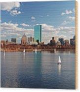 Boston On The Charles  Wood Print