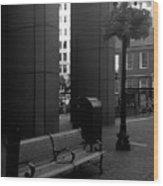 Boston Park Bench And Lantern Wood Print