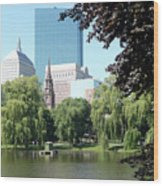 Boston Public Garden Wood Print