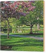 Boston Public Garden Pond Through The Cherry Blossom Spring Day Wood Print