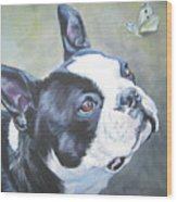 boston Terrier butterfly Wood Print by Lee Ann Shepard