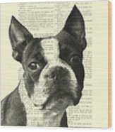 Boston Terrier Portrait In Black And White Wood Print